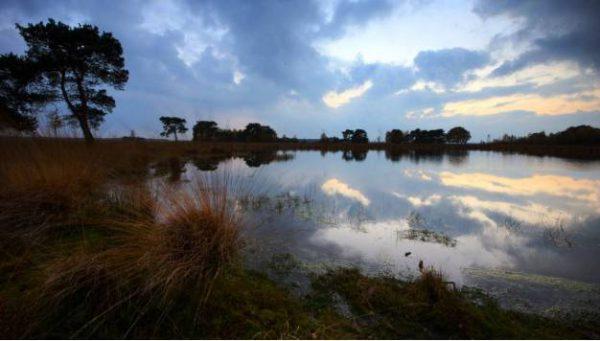 22 oktober – Runtogether -Huis ter Heide – 12 km &20km – Loon op Zand