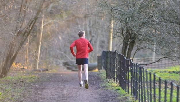 Hardlopen en hersenen: Een heel gezonde combinatie. Deel 2