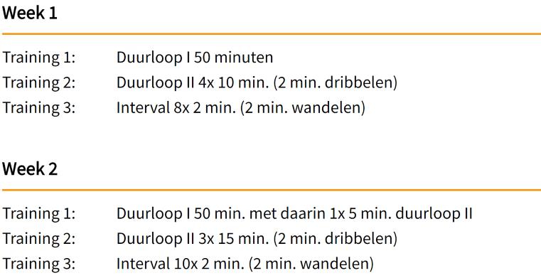 Voorbeeld hardloopschema 15 km