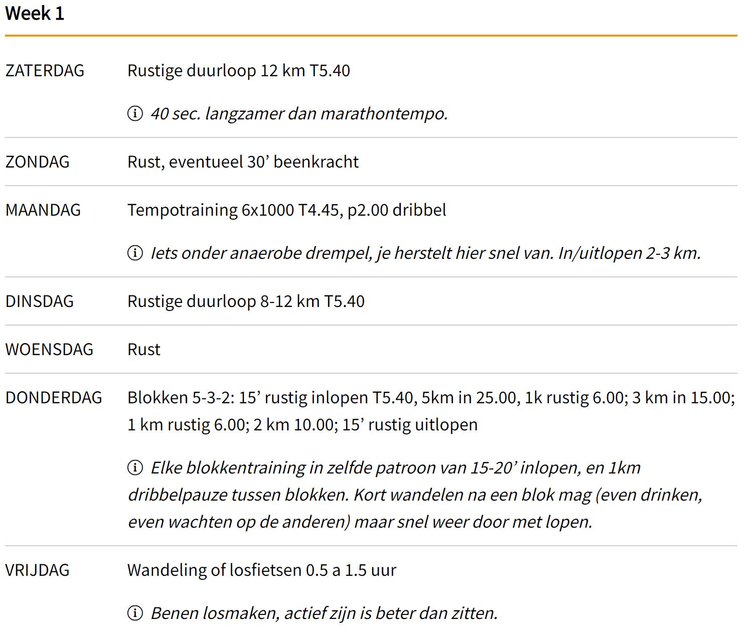 Voorbeeld Blokkenschema Marathon