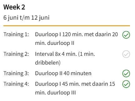 Een professioneel hardloopschema van ProRun