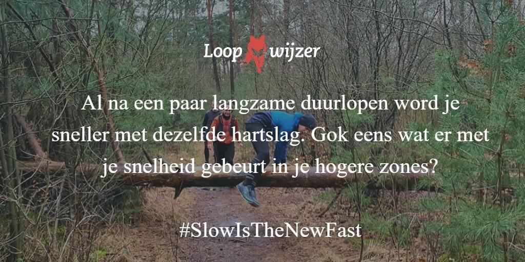 Loopwijzer: word sneller door langzaam te lopen