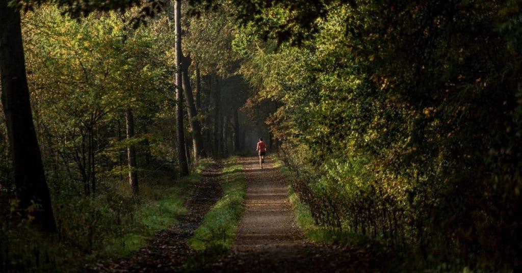 Eddy blogt: Marathongeluk